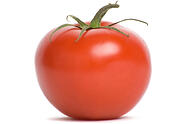Cooking with Fresh Tomatos